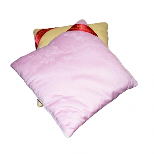 梧州蚕丝抱枕被100%桑蚕丝